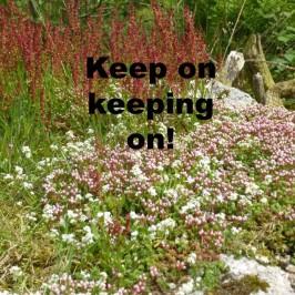 Keep on – keeping on!
