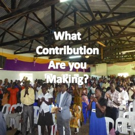 What Contribution Are You Making?