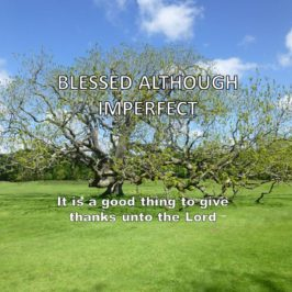 Blessed although Imperfect!